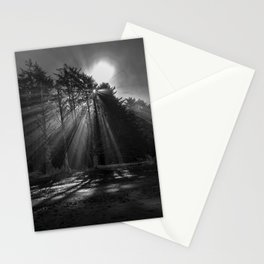 Tree Lights Stationery Cards