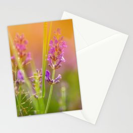 Towards the summer Stationery Cards
