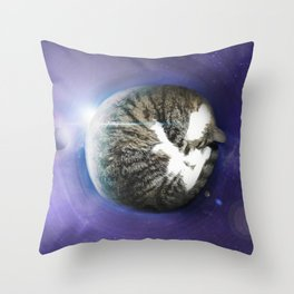 The Sleeping Cat Throw Pillow