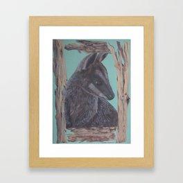 Pretty Faced Wallaby Framed Art Print