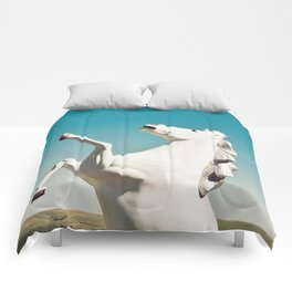 Guardian of the Plains Comforters