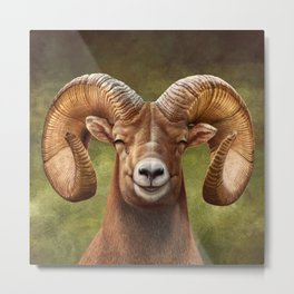 Smiling Bighorn Sheep 03 Metal Print