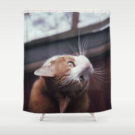 079//365 [v2] Shower Curtain