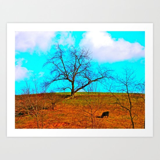 One Black Cow Art Print