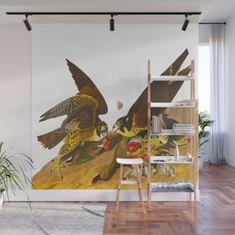 Great Footed Hawk Vintage Scientific Illustration Birds of America John James Audubon Wall Mural