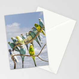 Parakeets perched on a limb Stationery Cards