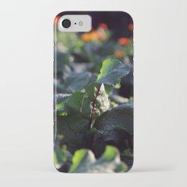 beetroot iPhone Case