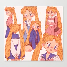 Usagi Canvas Print
