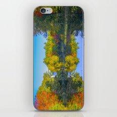Morning reflection iPhone & iPod Skin
