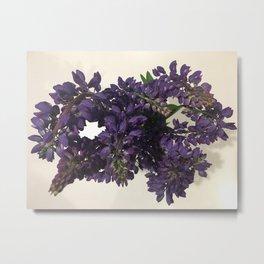 Purple Lupins Metal Print