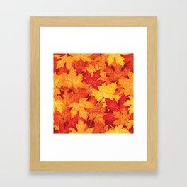 Autumn leaves #10 Framed Art Print