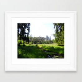 Salmon Creek Framed Art Print