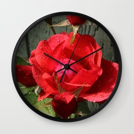 Budding and Bloom Wall Clock