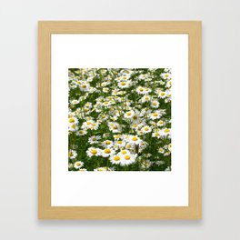meadow with daisies Framed Art Print