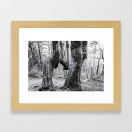The Beauty of Singularity Framed Art Print