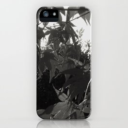 Before I leave series iPhone Case