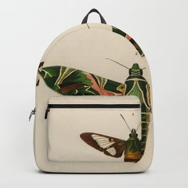 Moths 1936 Illustration Backpack