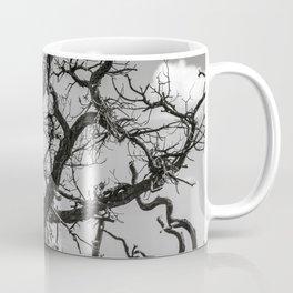 Ancient Tree, Survivor, Alive Coffee Mug