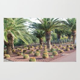 Tropical landcsape with cactus and Palm trees Rug