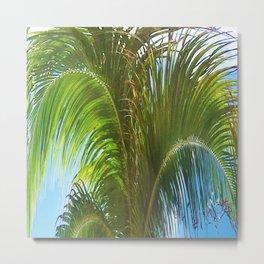 437 - Abstract Palm Tree Design Metal Print