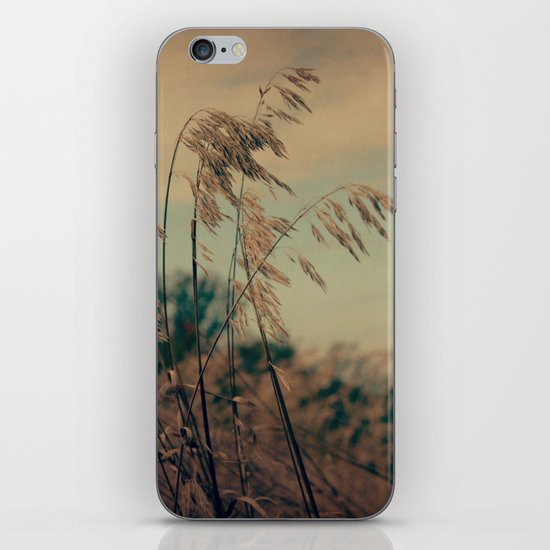 Winter Field iPhone & iPod Skin