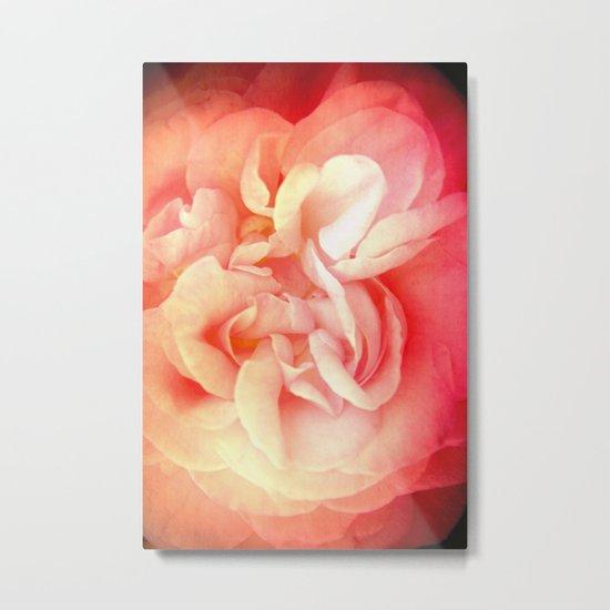 Bed of Roses Metal Print
