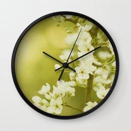 Spring - Study 7 Wall Clock