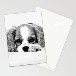 Angelic Cavalier Stationery Cards