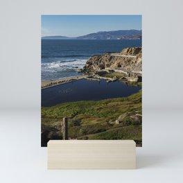San Fran Lagoon II Mini Art Print