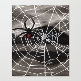 Redback Spider Canvas Print