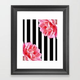 Pink roses on black and white stripes Framed Art Print