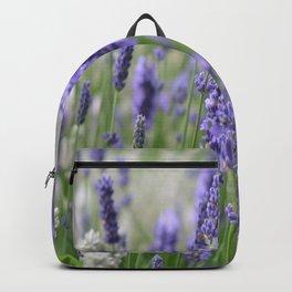 Lavender in field Backpack