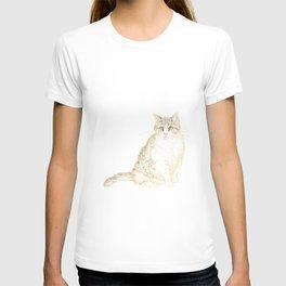 Plump Shorthair Tabby Cat T-shirt