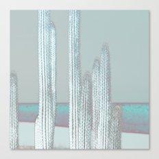 Cactus Blues Canvas Print