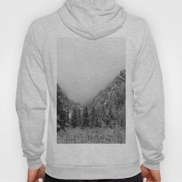 Fog in the Canyon Hoody