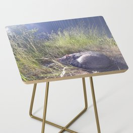 A cat's dream Side Table