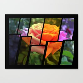Pink Roses in Anzures 6 Tinted 2 Canvas Print