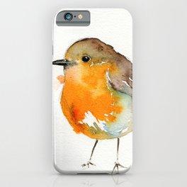 Robin Bobin Along iPhone Case