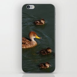 Family time! iPhone Skin