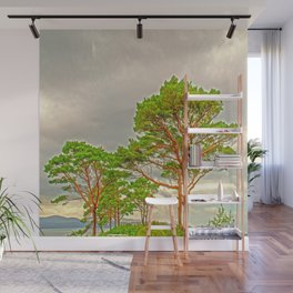 Magestic old Trees Wall Mural