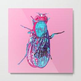 Fruit Fly Metal Print