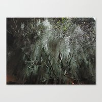moss Canvas Prints featuring Moss by Saundra Myles