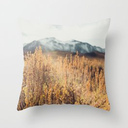 Eastern Sierras No 473 Throw Pillow