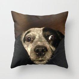 Absurdity Seen 'Round the World Throw Pillow