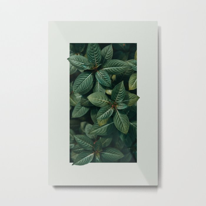 Growth III Metal Print