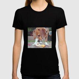 Inquisitive T-shirt