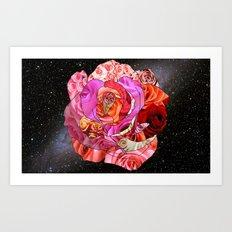 Rose Of Roses Art Print