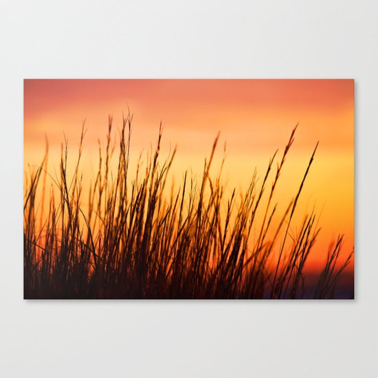 Enjoy the Warmth Canvas Print