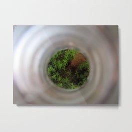 Bottled Forest Metal Print