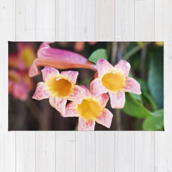 Tangerine Beauty Cross Vine - Three Plus One Rug